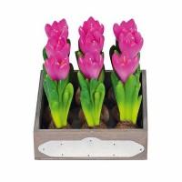 Broste Kerzen 'Krokus' pink